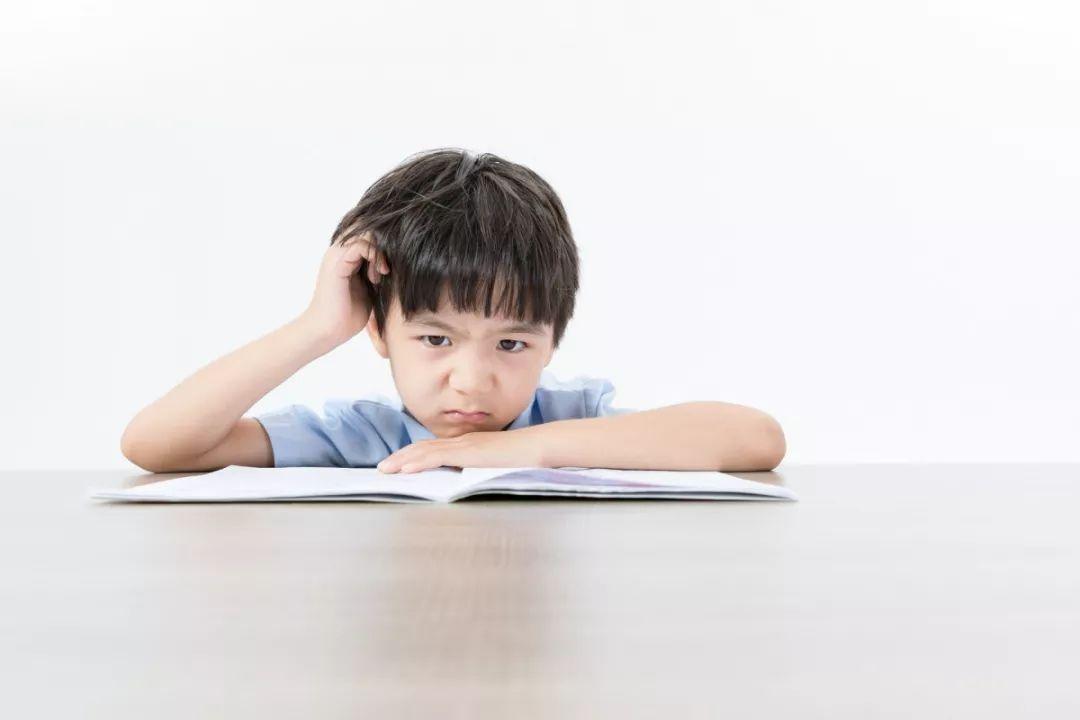 教育界新发现震惊世界,幼升小家长必看